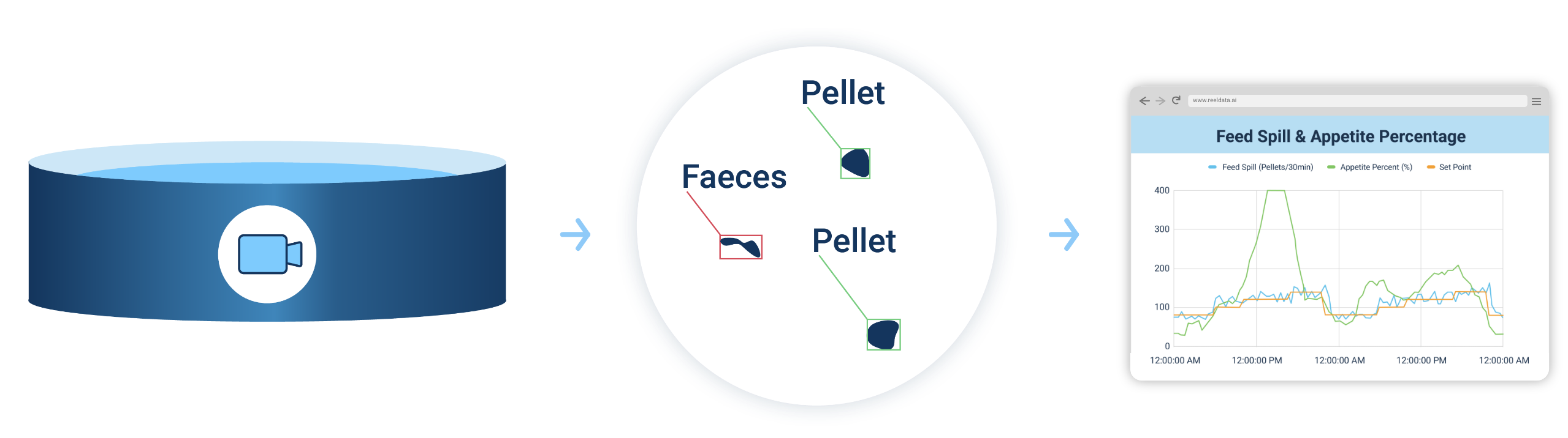This is iconography that shows a tank with a camera system, a magnified view into pellet and feces counting and a graphic of a browser window that showcases the relation of time to feed spill, appetite percentage and set points on a graph.