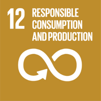 This is an image of #12 of The United Nations  Sustainable Development Goals - Responsible Consumption and Production. The image is of a white infinite loop and is on a light brown background.