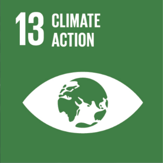 This is an image of #13 of The United Nations  Sustainable Development Goals - Climate Action. The image is of a white eye with the waves of an ocean as the eye's pupil. The image is on a green background.
